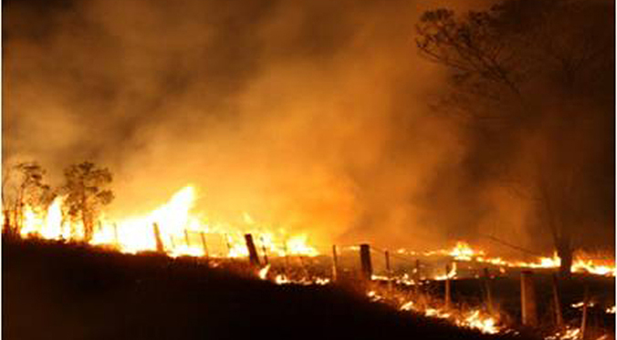 Policy Changes for NSW Rural Fire Service